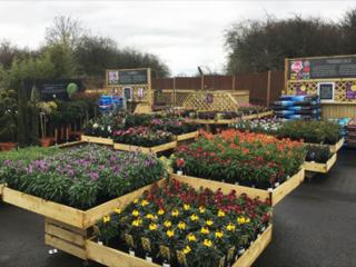 stagecraft-flowerbeds-1